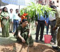 Tree Plantation being carried out by Smt Deepa Bajwa, DG DE