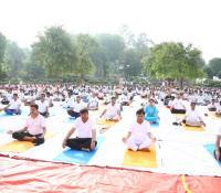 अन्तर्राष्ट्रीय योग दिवस के अवसर पर योगा करते हुए श्री संजय मित्रा, रक्षा सचिव भारत सरकार, श्री यज्ञेश्वर शर्मा, महानिदेशक रक्षा सम्पदा व अन्य वरिष्ठ अधिकारीगण
