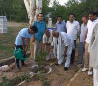 Celebration of the World Environment Day, 2017 in Cantonment Board Morar